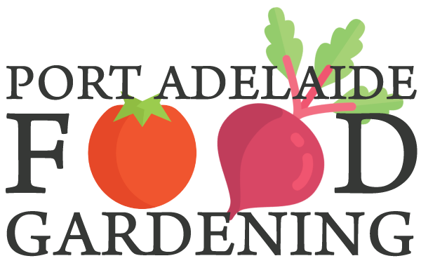 Port Adelaide Food Gardening productive food garden installations. Specializing in wicking garden beds and worm composting systems.